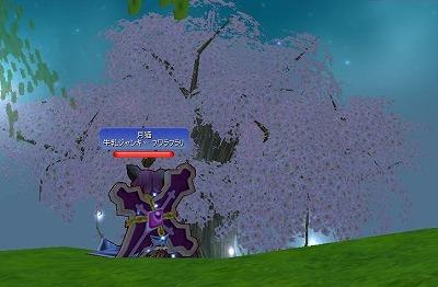 宵の世界樹